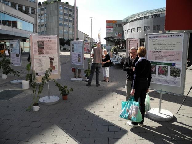 Marktstand Neophyten (Foto: O. Gardi)